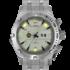 Часы  SILVER VULTURE (TS)